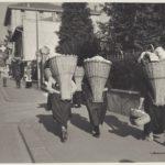 1939 Cassarate verso il mercato